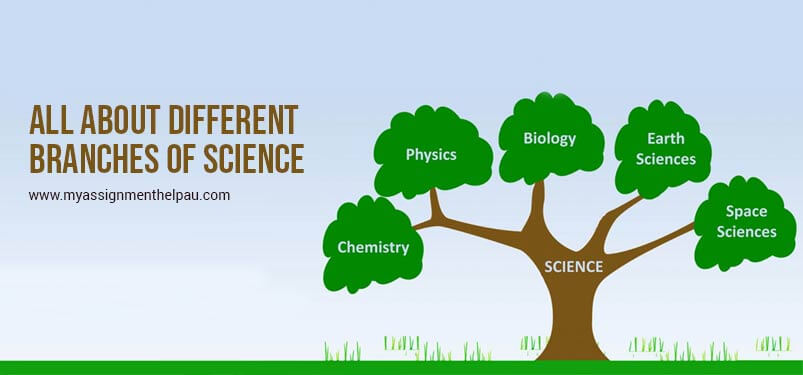 All About Different Branches Of Science