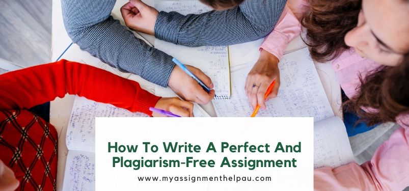 How to Write a Perfect and Plagiarism-Free Assignment