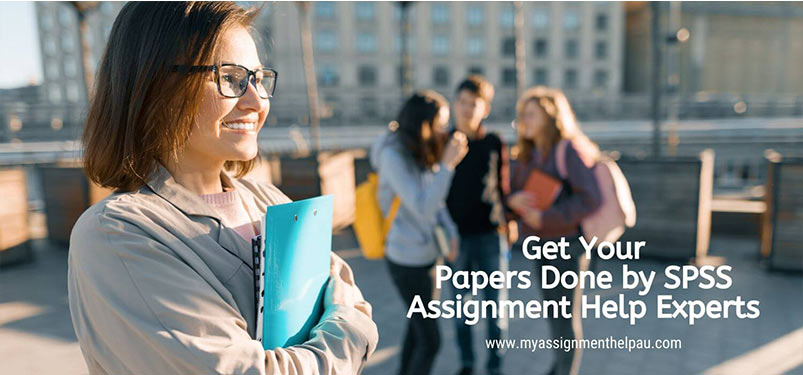 Get Your Papers Done by SPSS Assignment Help experts