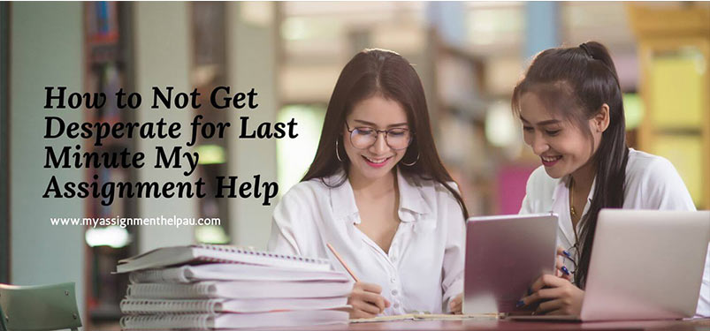 How to Not Get Desperate for Last Minute My Assignment Help