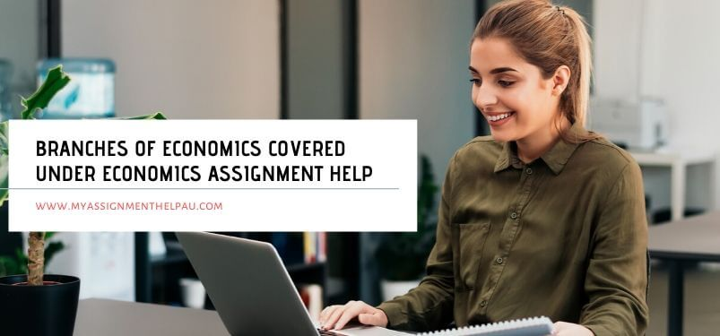 Branches of Economics Covered Under Economics Assignment Help